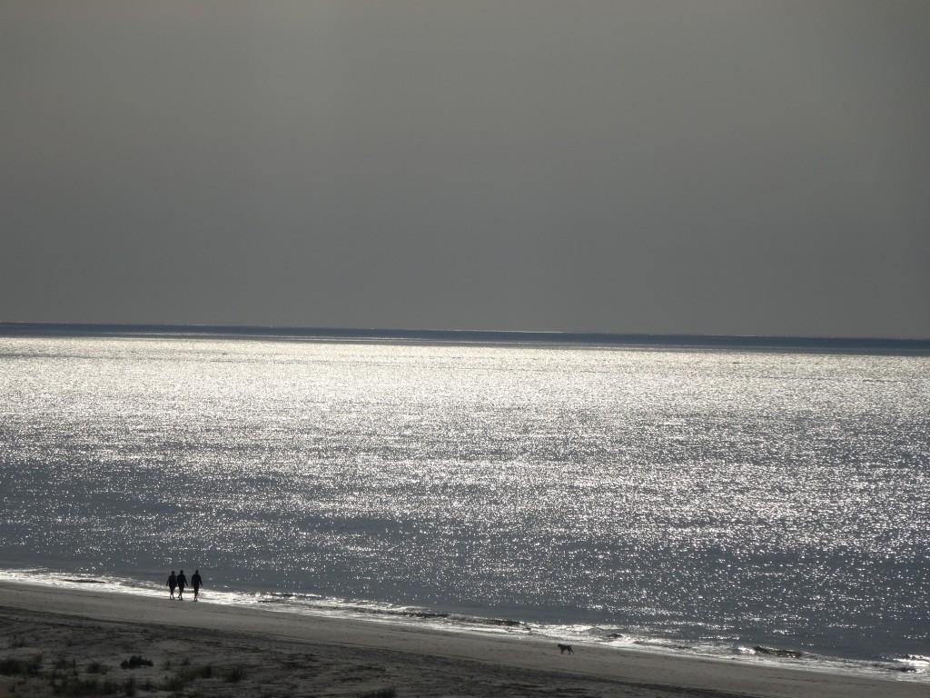 beach at hilton head