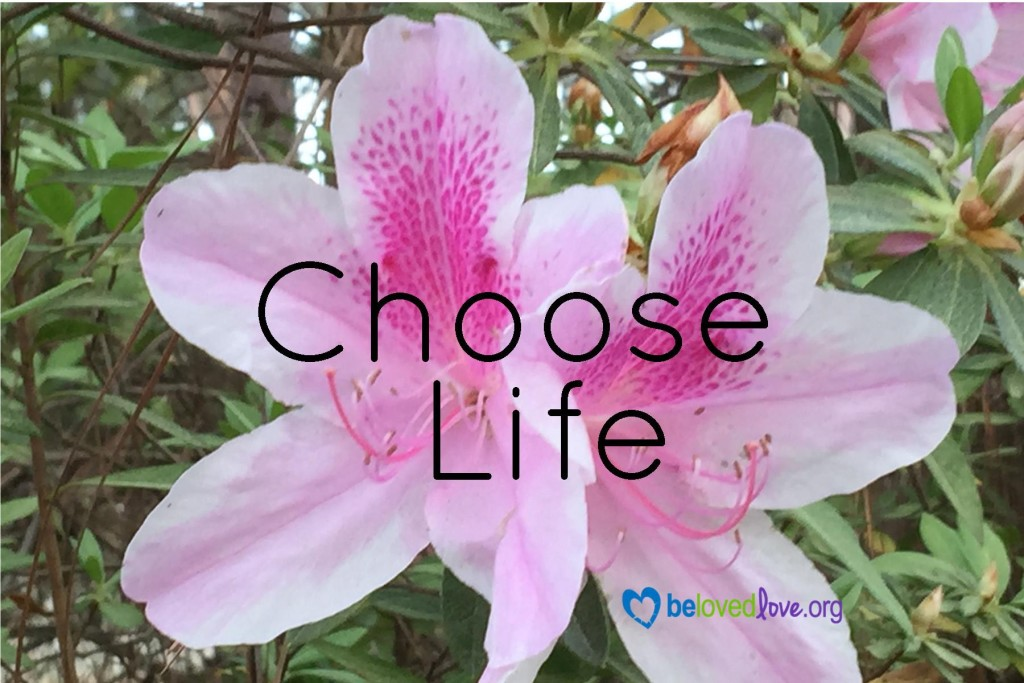 3:25:16 Choose Life