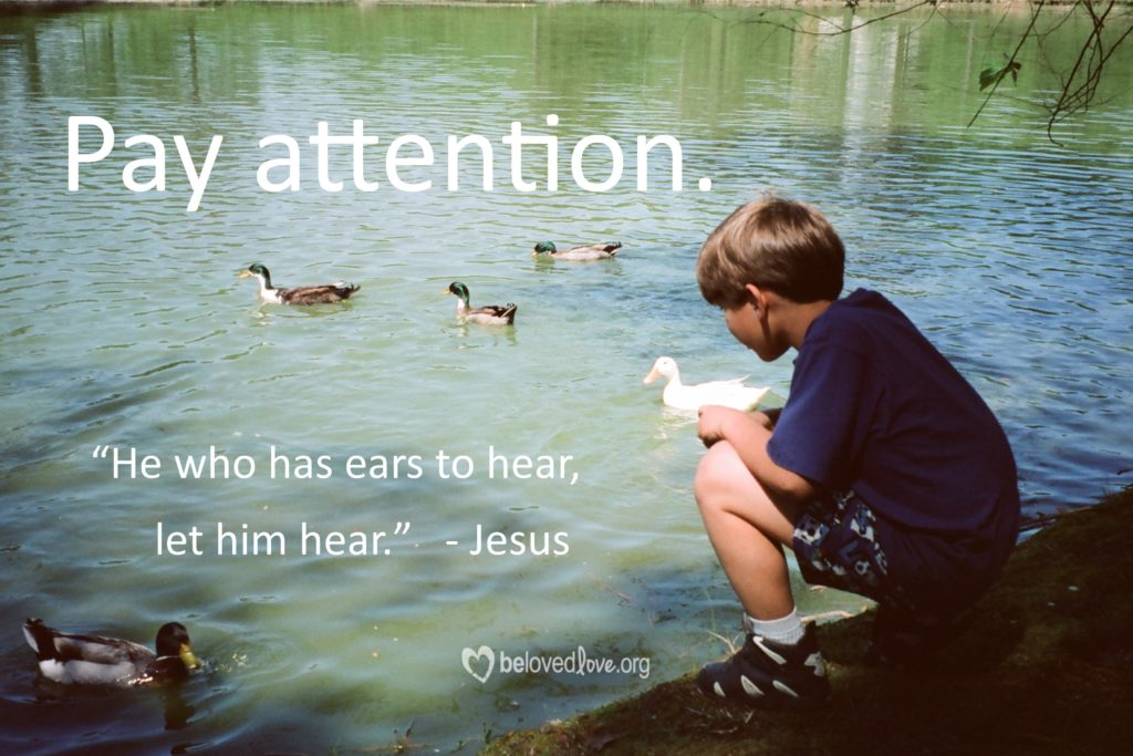 pay-attention-4x6