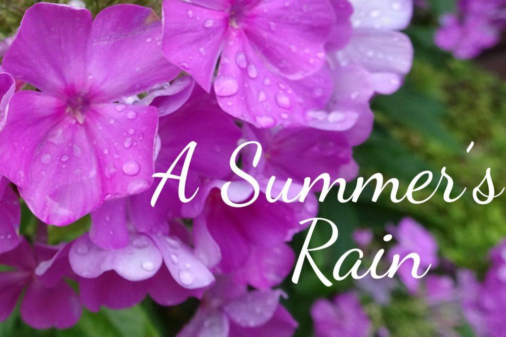 102816-a-summers-rain