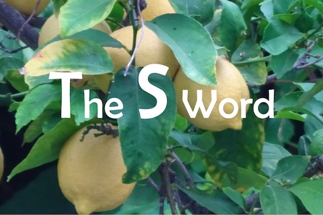 """The S Word"" written on a lemon tree."