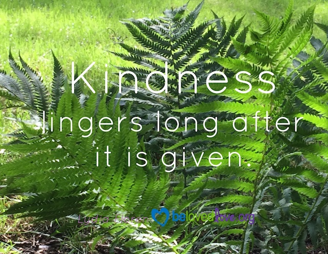 Ferns, with the caption Kindness lingers long after it is given.
