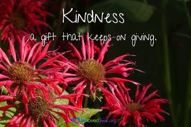 "Red flowers with the words, ""Kindness:  a gift that keeps on giving"""