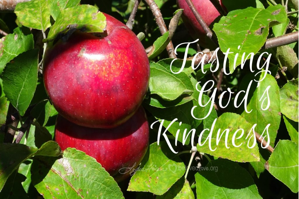 "Apples on a tree, with caption ""tasting God's Kindness"""